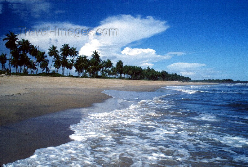 liberia20: Grand Bassa County, Liberia, West Africa: on the beach - coconut trees and white sand - tropical beach - photo by M.Sturges - (c) Travel-Images.com - Stock Photography agency - Image Bank