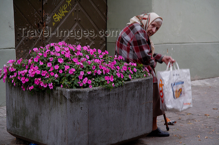 lithuania178: Lithuania - Vilnius: old lady and flower pot - old town - photo by Sandia - (c) Travel-Images.com - Stock Photography agency - Image Bank