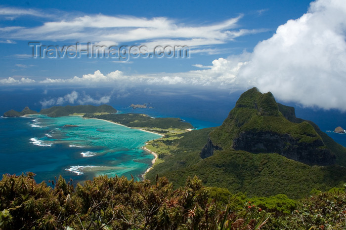 lord-howe10: Lord Howe island: covered in green - Unesco World Heritage site (Australia) - photo by R.Eime - (c) Travel-Images.com - Stock Photography agency - Image Bank