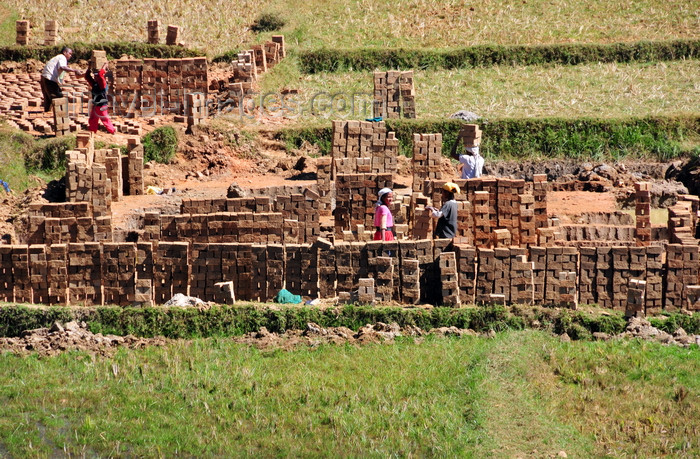 madagascar157: RN2, Antananarivo Province, Madagascar: mud brick industry in the middle of rice fields - photo by M.Torres - (c) Travel-Images.com - Stock Photography agency - Image Bank