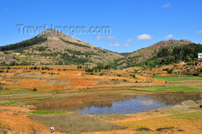 madagascar159: RN2, Alaotra-Mangoro region, Toamasina Province, Madagascar: hills, pond and fields - rural Madagascar - photo by M.Torres - (c) Travel-Images.com - Stock Photography agency - Image Bank
