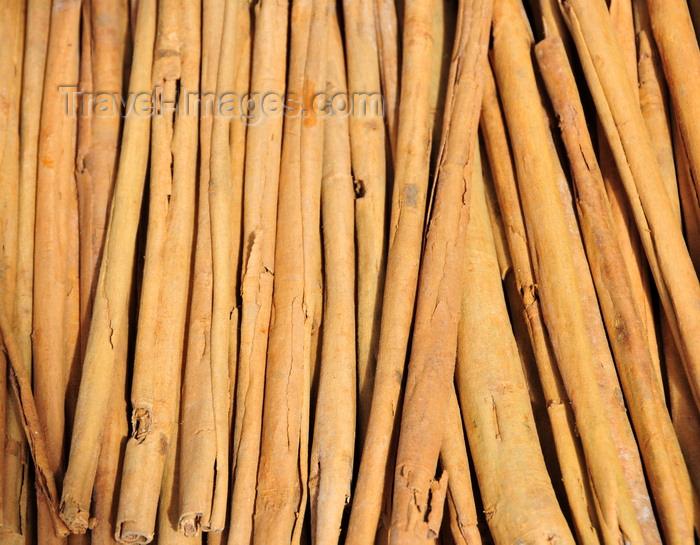 madagascar168: RN2, Atsinanana region, Toamasina Province, Madagascar: cinnamon quills drying - bark of Cinnamomum verum - photo by M.Torres - (c) Travel-Images.com - Stock Photography agency - Image Bank