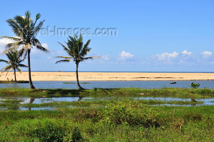 madagascar180: RN5, Mahatsara, Atsinanana region,Toamasina Province, Madagascar: beach and coconut trees - marsh near the Onibe river estuary - photo by M.Torres - (c) Travel-Images.com - Stock Photography agency - Image Bank