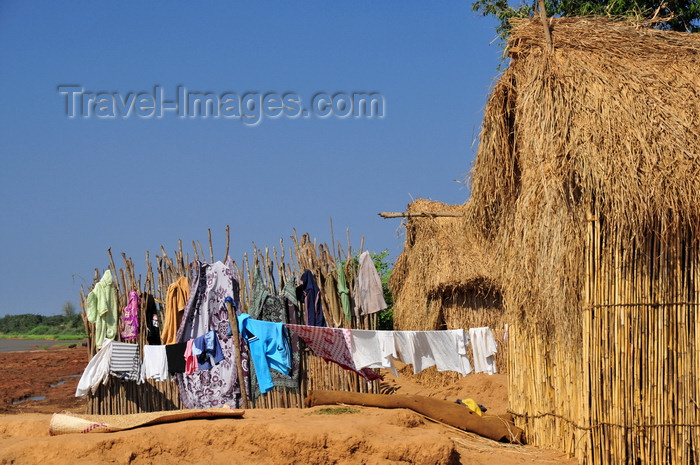 madagascar208: Tsimafana, Belo sur Tsiribihina district, Menabe Region, Toliara Province, Madagascar: straw huts and clothes line - village near the ferry 'terminal' - photo by M.Torres - (c) Travel-Images.com - Stock Photography agency - Image Bank