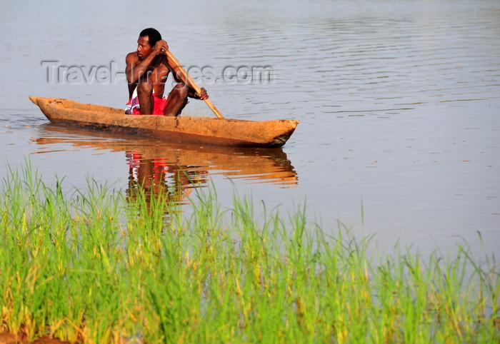 madagascar296: Antsalova district, Melaky region, Mahajanga province, Madagascar: Manambolo River - rice nursery and man in dugout canoe - photo by M.Torres - (c) Travel-Images.com - Stock Photography agency - Image Bank
