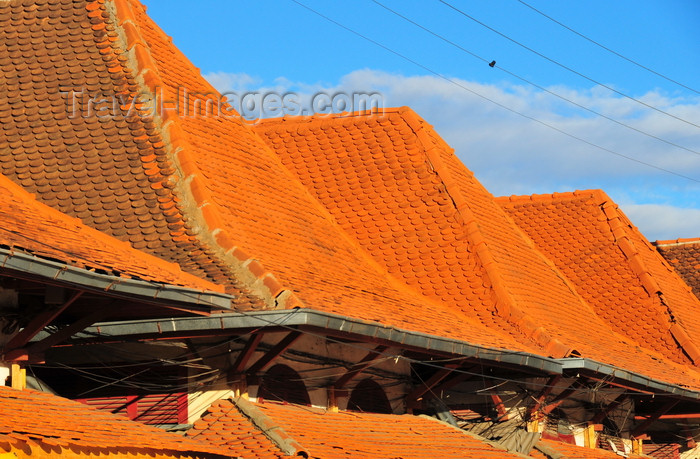 madagascar3: Antananarivo, Madagascar: roofs of the pavilions at Analakely Market in central Tana - red roof shingles - photo by M.Torres - (c) Travel-Images.com - Stock Photography agency - Image Bank