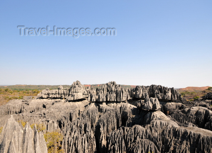 madagascar311: Tsingy de Bemaraha National Park, Mahajanga province, Madagascar: the rocks were formed at the time of Madagascar's separation from mainland Africa,  African tectonic plate - karst limestone formation - UNESCO World Heritage Site - photo by M.Torres - (c) Travel-Images.com - Stock Photography agency - Image Bank