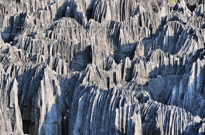 madagascar325: Tsingy de Bemaraha National Park, Mahajanga province, Madagascar: karst limestone formation - Tsingy de Bemaraha Strict Nature Reserve, the largest reserve in Madagascar - UNESCO World Heritage Site - photo by M.Torres - (c) Travel-Images.com - Stock Photography agency - Image Bank