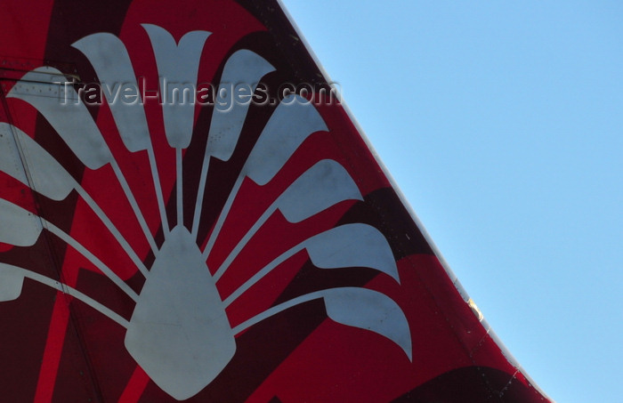 madagascar433: Antananarivo / Tananarive / Tana - Analamanga region, Madagascar: Air Madagascar aircraft tail - traveller's palm logo - Ivato International Airport -  - Boeing 737-3Q8 5R-MFH - photo by M.Torres - (c) Travel-Images.com - Stock Photography agency - Image Bank