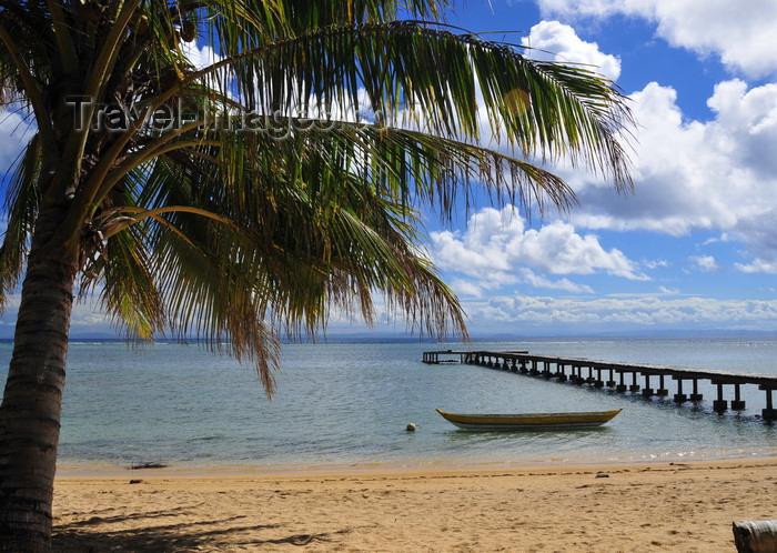 madagascar51: Vohilava, Île Sainte Marie / Nosy Boraha, Analanjirofo region, Toamasina province, Madagascar: coconut tree, beach and jetty - photo by M.Torres - (c) Travel-Images.com - Stock Photography agency - Image Bank