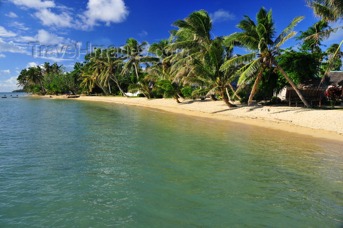 madagascar59: Vohilava, Île Sainte Marie / Nosy Boraha, Analanjirofo region, Toamasina province, Madagascar: coconut trees abd huts along the beach front - photo by M.Torres - (c) Travel-Images.com - Stock Photography agency - Image Bank