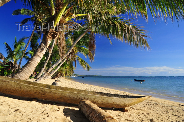 madagascar62: Vohilava, Île Sainte Marie / Nosy Boraha, Analanjirofo region, Toamasina province, Madagascar: dugout canoe under the coconut trees - beach scene - photo by M.Torres - (c) Travel-Images.com - Stock Photography agency - Image Bank