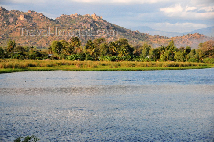malawi114: Mangochi, Malawi: east bank of the River Shire, 7 km north of lake Malombe - the Shire is an outlet of Lake Malawi and flows into the Zambezi - photo by M.Torres - (c) Travel-Images.com - Stock Photography agency - Image Bank