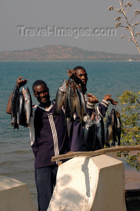 malawi16: Senga Bay, Lake Nyasa, Central region, Malawi: fishermen offer the day's catch - cichlid - photo by D.Davie - (c) Travel-Images.com - Stock Photography agency - Image Bank
