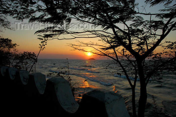 malawi22: Senga Bay, Lake Nyasa, Central region, Malawi: windy sunrise - acacia and wall - photo by D.Davie - (c) Travel-Images.com - Stock Photography agency - Image Bank