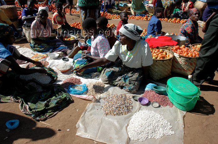 malawi24: Nkhoma, Lilongwe district, Central region, Malawi: market scene - photo by D.Davie - (c) Travel-Images.com - Stock Photography agency - Image Bank