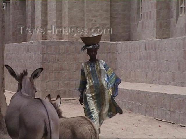 mali26: Mali - Bozo town: street scene - woman and donkeys - photo by A.Slobodianik - (c) Travel-Images.com - Stock Photography agency - Image Bank