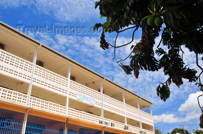 mayotte10: Mamoudzou, Grande-Terre / Mahore, Mayotte: breadfruit tree and the Social Security building - Caisse de Securité Sociale - photo by M.Torres - (c) Travel-Images.com - Stock Photography agency - Image Bank