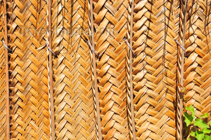 mayotte46: Pamandzi, Petite-Terre, Mayotte: wall made of raffia - raphia - photo by M.Torres - (c) Travel-Images.com - Stock Photography agency - Image Bank