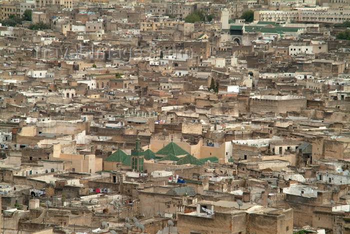 moroc340: Morocco / Maroc - Fez: the Medina from above - photo by J.Banks - (c) Travel-Images.com - Stock Photography agency - Image Bank