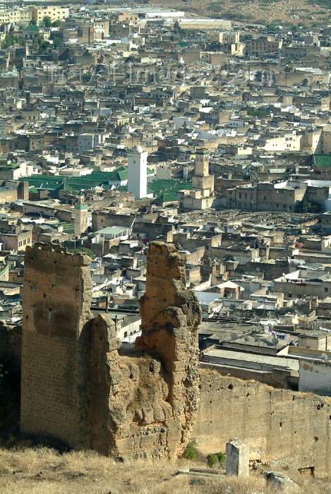 moroc341: Morocco / Maroc - Fez: from the hills - from above - photo by J.Banks - (c) Travel-Images.com - Stock Photography agency - Image Bank