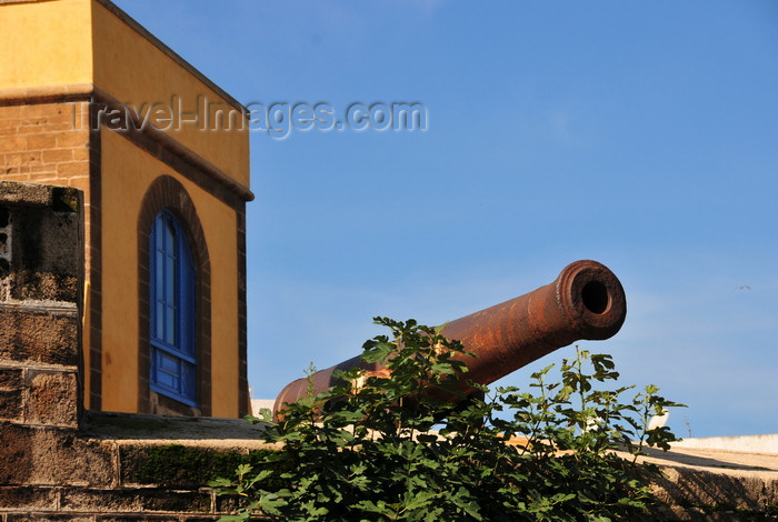 moroc542: Casablanca, Morocco: old canon at the skala - ancient battery - remains of the Portuguese fortifications of 'Casa Branca' - Blvd Sidi Mohammed ben Abdallah - photo by M.Torres - (c) Travel-Images.com - Stock Photography agency - Image Bank