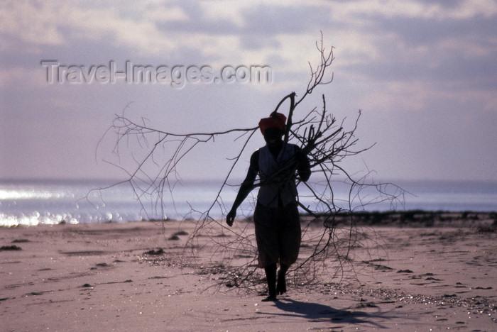 mozambique188: Pemba / Porto Amélia, Cabo Delgado, Mozambique / Moçambique: a women collects fire wood on the beach - silhouette / uma mulher recolhe lenha na praia - silhueta - photo by F.Rigaud - (c) Travel-Images.com - Stock Photography agency - Image Bank