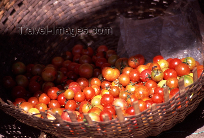 mozambique202: Mozambique island / Ilha de Moçambique, Nampula province: cherry tomatoes in a basket / tomates cereja num cesto - photo by F.Rigaud - (c) Travel-Images.com - Stock Photography agency - Image Bank