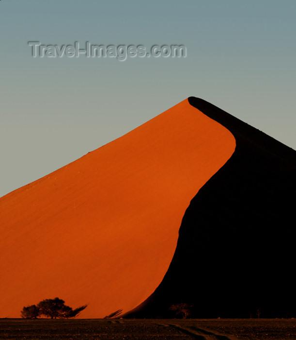 namibia120: Namib Desert - Sossusvlei, Hardap region, Namibia, Africa: Apricot coloredsand dune with tree at sunrise - photo by B.Cain - (c) Travel-Images.com - Stock Photography agency - Image Bank
