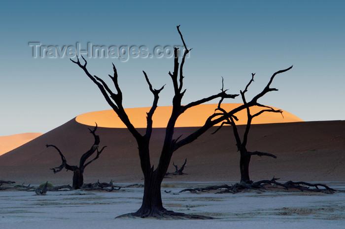namibia127: Namib desert - Deadvlei - Hardap region, Namibia: Dead trees,orange crescent dune - photo by B.Cain - (c) Travel-Images.com - Stock Photography agency - Image Bank