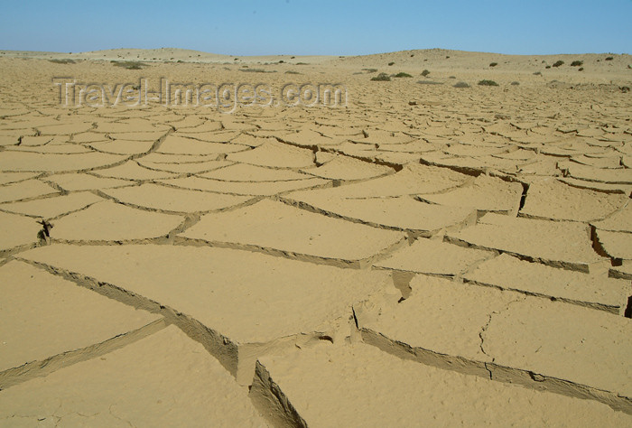 namibia14: Namib desert: cracked river bed - dry mud - photo by J.Banks - (c) Travel-Images.com - Stock Photography agency - Image Bank