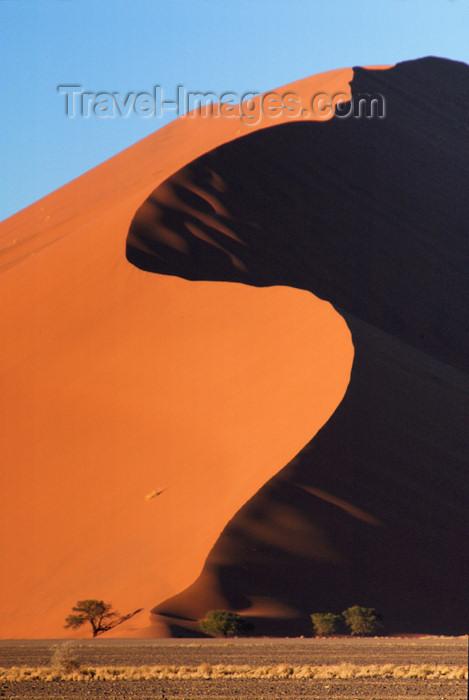 namibia173: Namib Desert - Sossusvlei, Hardap region, Namibia, Africa: S shaped sand duneat sunrise - photo by B.Cain - (c) Travel-Images.com - Stock Photography agency - Image Bank