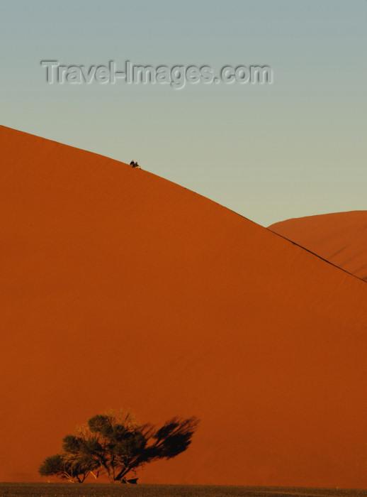 namibia190: Namib Desert - Sossusvlei, Hardap region, Namibia, Africa: two people on Dune# 45 at sunrise - photo by B.Cain - (c) Travel-Images.com - Stock Photography agency - Image Bank