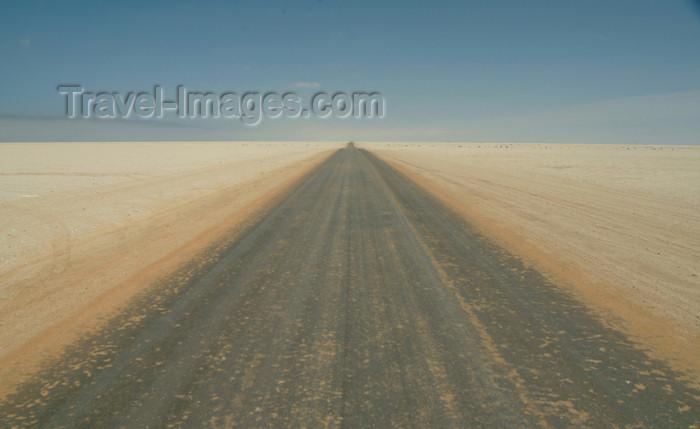 namibia20: Namibia - Namib desert: endless road - horizon - photo by J.Banks - (c) Travel-Images.com - Stock Photography agency - Image Bank