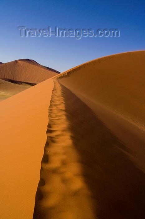namibia204: Namib Desert - Sossusvlei, Hardap region, Namibia:  apricot colour curby sand dunes - ridge - Namib-Naukluft National Park - photo by Sandia - (c) Travel-Images.com - Stock Photography agency - Image Bank