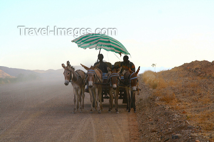 namibia232: Damaraland, Kunene Region, Namibia: most popular means of transport - donkey cart - Quadriga - photo by Sandia - (c) Travel-Images.com - Stock Photography agency - Image Bank
