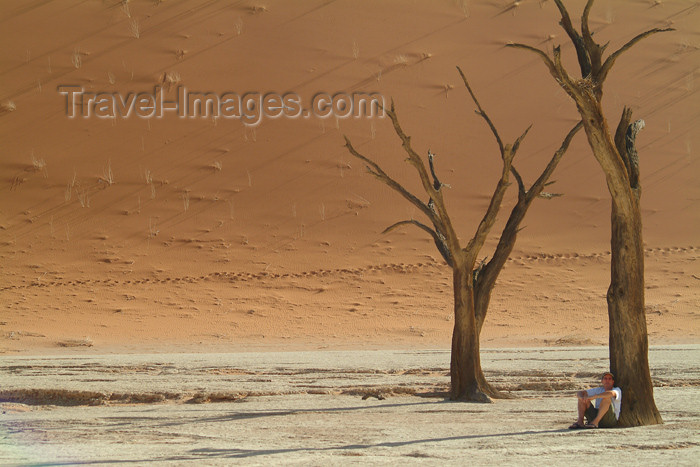 namibia29: Namib desert - Deadvlei / Death Valley - Hardap region, Namibia: light and shade - dead trees - photo by J.Banks - (c) Travel-Images.com - Stock Photography agency - Image Bank