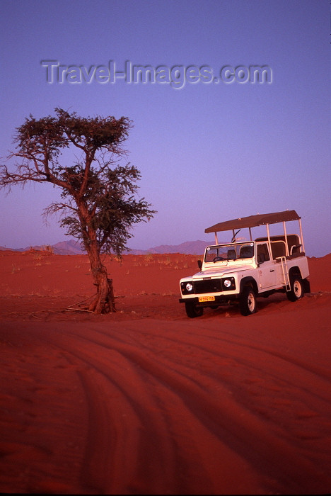 namibia81: Namibia - Namib desert: Land Rover Defender and tree - photo by G.Friedman - (c) Travel-Images.com - Stock Photography agency - Image Bank