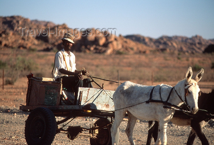 namibia96: Namibia - old man with donkey cart from afar - photo by G.Friedman - (c) Travel-Images.com - Stock Photography agency - Image Bank