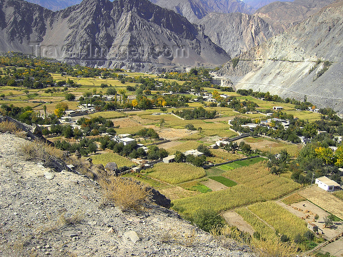 pakistan163: Hunza Valley - Northern Areas, Pakistan: agriculture in the scarce fertile land surrounded by mountains - Karakoram Highway - photo by D.Steppuhn - (c) Travel-Images.com - Stock Photography agency - Image Bank
