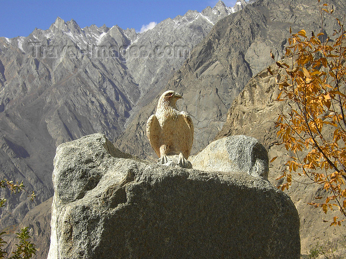 pakistan179: Duikar hamlet, Altit - Northern Areas / FANA, Pakistan: eagle at Eagles' Nest hotel - photo by D.Steppuhn - (c) Travel-Images.com - Stock Photography agency - Image Bank