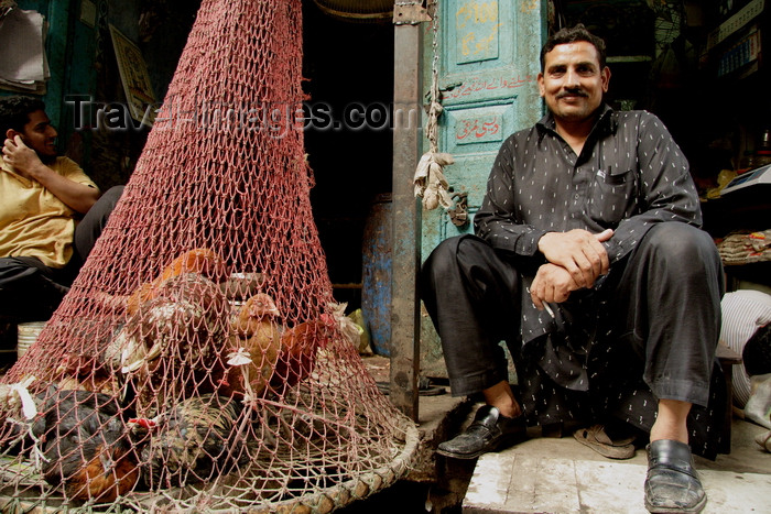 pakistan192: Lahore, Punjab, Pakistan: chicken in a net - poultry seller in the Old City - photo by G.Koelman - (c) Travel-Images.com - Stock Photography agency - Image Bank