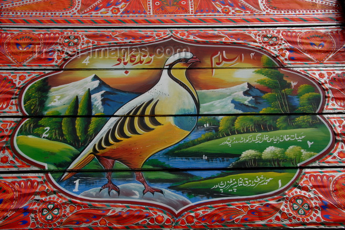 pakistan203: Peshawar, NWFP,  Pakistan: detail of a truck painting - grouse and mountains - photo by G.Koelman - (c) Travel-Images.com - Stock Photography agency - Image Bank