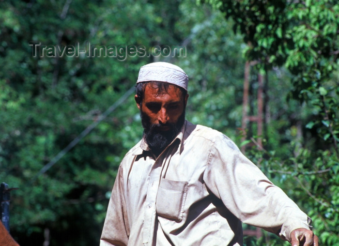 pakistan58: Pakistan -  Murree Hills/Margalla Hills: Man carrying contruction material - photo by R.Zafar - (c) Travel-Images.com - Stock Photography agency - Image Bank