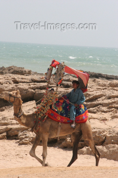 pakistan79: Karachi, Sindh, Pakistan: boy on camel - French Beach - photo by R.Zafar - (c) Travel-Images.com - Stock Photography agency - Image Bank