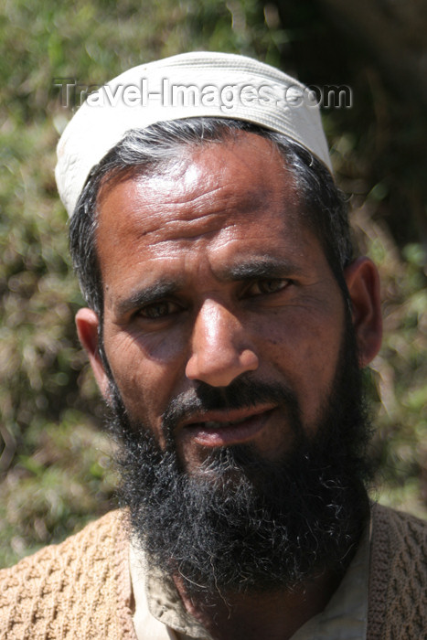pakistan91: Jabbar Nara Pata, Siran Valley, North-West Frontier Province, Pakistan: middle aged man with beard - photo by R.Zafar - (c) Travel-Images.com - Stock Photography agency - Image Bank