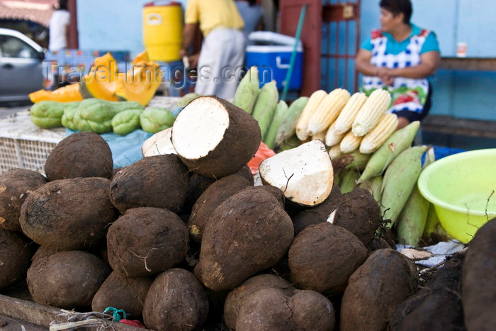 panama605: Santiago de Veraguas, Panama: yams for sale at El Mosquero market - photo by H.Olarte - (c) Travel-Images.com - Stock Photography agency - Image Bank