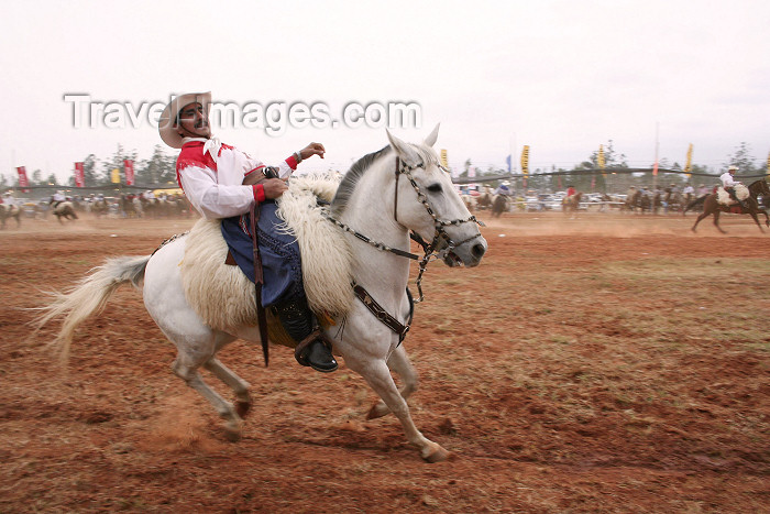 paraguay36: Paraguay - Luque - Departamento Central: horse rider - photo by A.Chang - (c) Travel-Images.com - Stock Photography agency - Image Bank