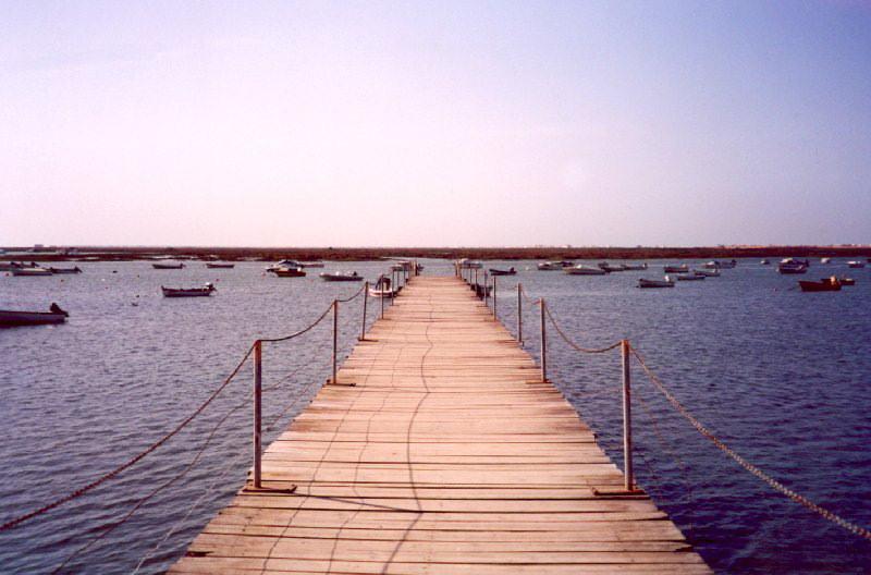 portugal-fa22: Portugal - Algarve - Faro: pier into the Ria Formosa natural reserve / pontão para a Reserva Natural da Ria Formosa - photo by M.Durruti - (c) Travel-Images.com - Stock Photography agency - Image Bank