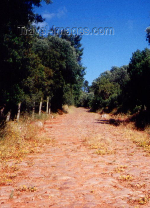 portugal117: Portugal - Setúbal: Roman road / estrada Romana - photo by M.Durruti - (c) Travel-Images.com - Stock Photography agency - Image Bank